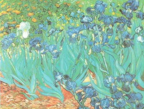 Portaocchiali Vincent van Gogh: Iris - 4